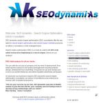 SEO Dynamiks