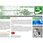 Credit Control Solutions
