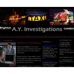 A.Y. Investigations