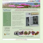 The Village Flowers