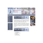 Virtual Business Sense