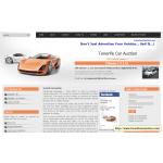Tenerife Car Auction