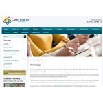 Clean Energy Consultancy
