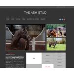 The Ash Stud