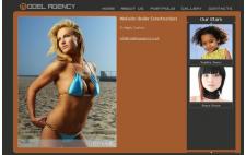 Modeling Agencys