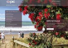 PIC Insurance