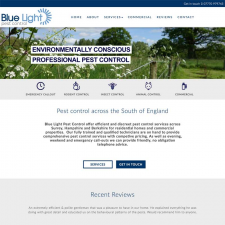 Blue Light Pest Control