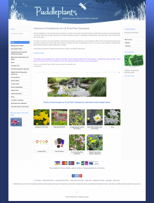 Puddleplants