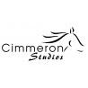 Cimmeron Studios logo