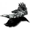 Ravenworks logo