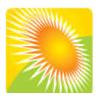 Custom Websites to Go logo