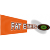 Fat Eyes Web Design logo