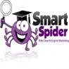 Smart Spider logo