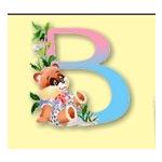 BabyPortaits.com