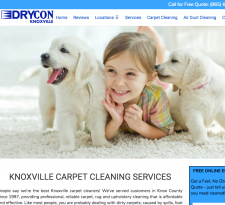 Knoxville Carpet Cleaning